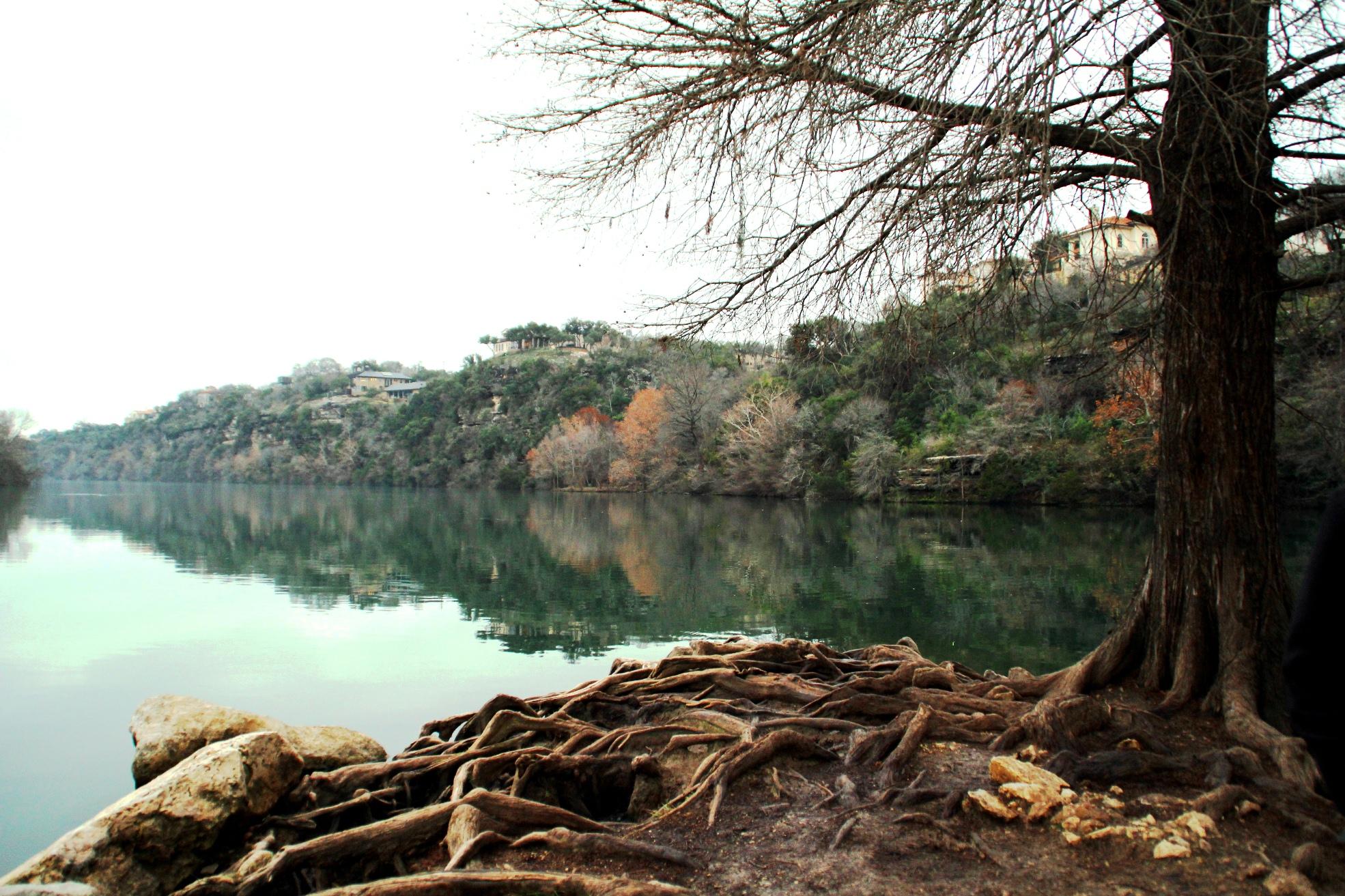 Red Bud Isle Trail - Texas | AllTrails