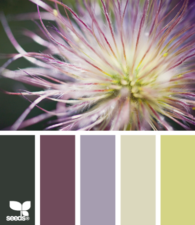 plum and green color scheme