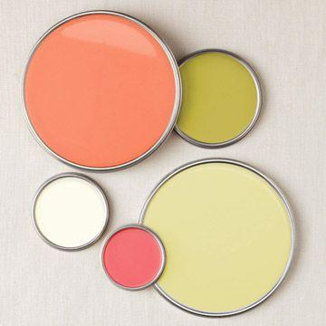 citrus tones paint palette