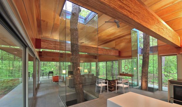 Tree House - Kenneth Wyner Photography